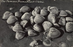 The Famous Pizmo Beach Clams
