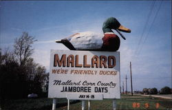 Mallard, We're Friendly Ducks