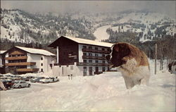 The Sojourner Inn and Orson - Jackson Hole Resort Area