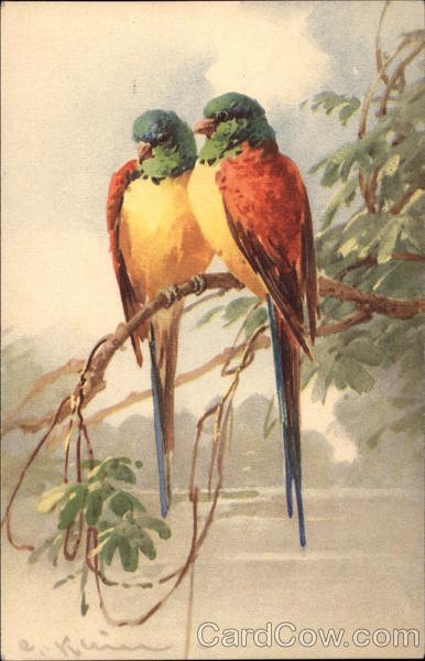 Two Colorful Parrots Share a Branch C. Klein Birds