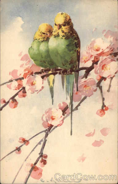 Two Budgies on a Branch With Pink Flowers C. Klein