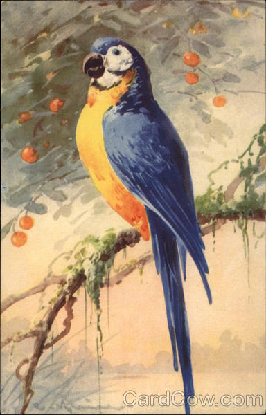 Blue and Yellow Parrot on Branch with Orange Fruit