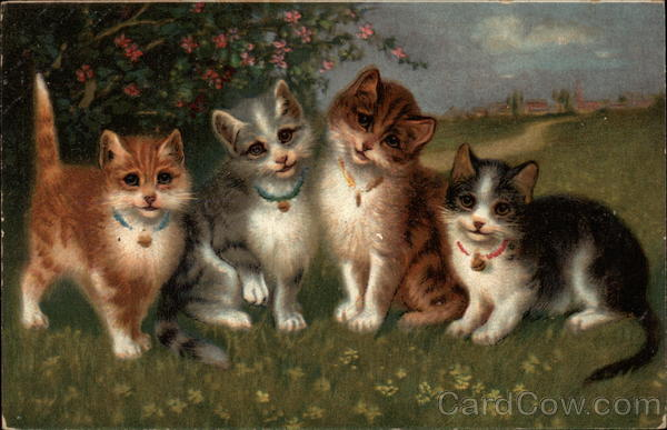 Four Cats in a Field