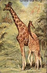 Giraffe and Young in Forest Scene