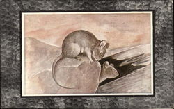 Two Mice on a Rock