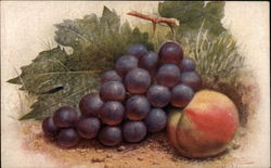 Still Life - Peach and Grapes