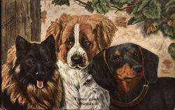 Three Good Friends - Dogs