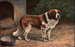 Saint Bernard with Dog Bowl