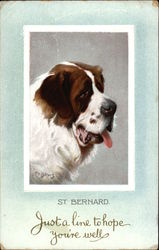 St. Bernard Dog Sends Greetings