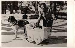 St. Bernard Pulling Child's Sleigh
