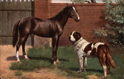 Brown Horse and St. Bernard
