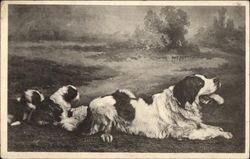 Family of St. Bernards