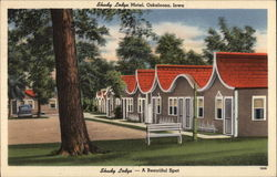 Shady Lodge Motel Postcard