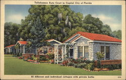 Tallahassee Auto Court in Capital City of Florida Postcard