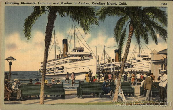 Showing Steamers, Catalina and Avalon at Anchor Santa Catalina Island California