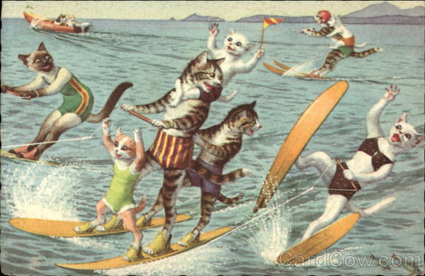 Cats Water Skiing Alfred Mainzer (Eugen Hurtong)