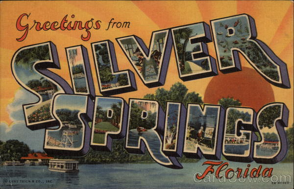 Greetings from Silver Springs Florida Large Letter