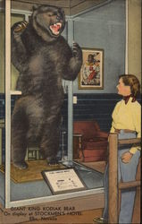 Giant King Kodiak Bear On Display at Stockmen's Hotel