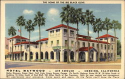 Hotel Maywood, the Home of the Big Black Olive