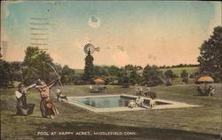Pool at Happy Acres