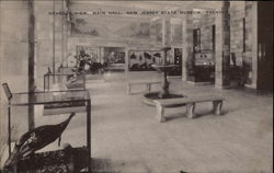 General View, Main Hall, New Jersey State Museum
