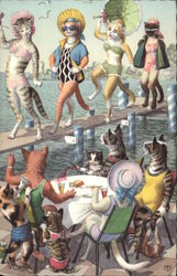 Cats at the Seashore Relax and Watch Bathing Beauties