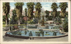 The beautiful gardens of the Beverly Hills Hotel
