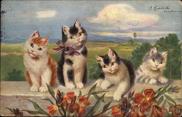 Four Kittens, one with Bow at Neck, Rest on Wall Cats