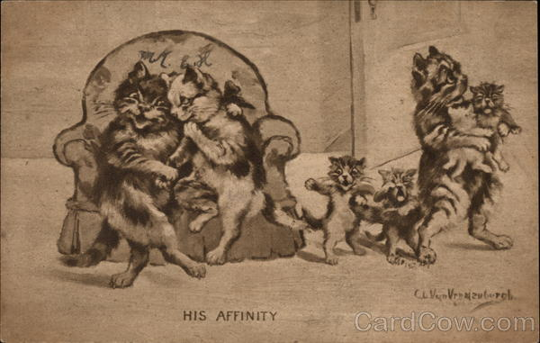 His Affinity Cats