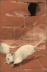 Two White Mice Running from Mousehole