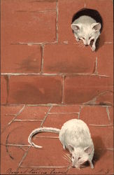 Two White Mice with Mouse Hole in Brick Wall