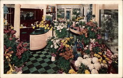 Edgewater Beach Hotel Flower Shop Postcard
