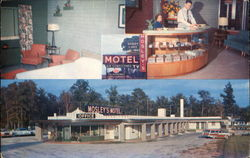 Mosley's Shady Lakes Motel