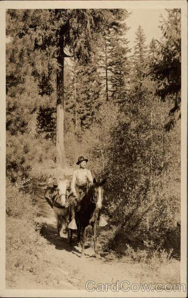 The Trail Cowboy Western