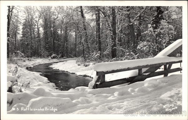 Rattlesnake Bridge in Winter Landscapes