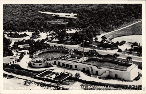 Aerial View of Marine Studios Marineland Florida