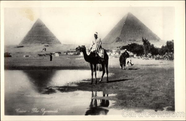 Man on Camel with Sphinx and Pyramids in the Background Cairo Egypt