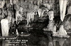 First Lily Pad Room, Onondaga Cave
