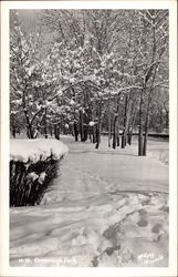 Greenough Park -Winter Scene