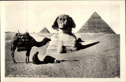 Prayer Near the Great Sphinx Postcard