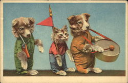Marching Dogs and Cat