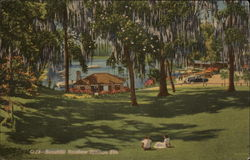 Beautiful Rainbow Springs, Florida Postcard