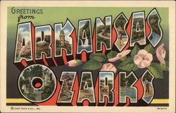 Greetings from Arkansas Ozarks Postcard