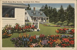 Candle Beam Shop Garden Postcard