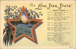 The Lone Star State - That's Texas Postcard