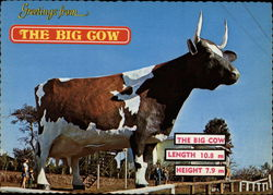 Greetings from the Big Cow Postcard
