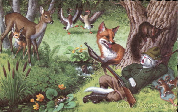 Woodland Animals Watch as Fox Disarms Napping Kitty Hunter