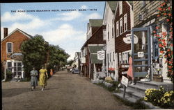 The Road Down Bearskin Neck