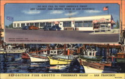 Exposition Fish Grotto - Fisherman's Wharf