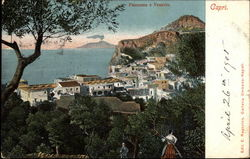 View of Town and Mount Vesuvius